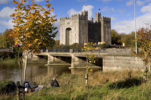 Bunratty Castle, Co Social Media